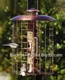 Copper Wire Oriole Feeder Images