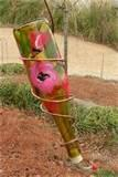 Pictures of Copper Wire Hummingbird Feeder