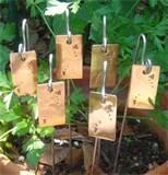 Copper Wire Garden Stakes Photos