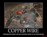 Pictures of Copper Wire Theft Death